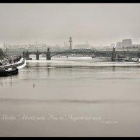 Андреевский мост :: DimCo ©
