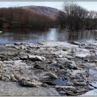 Ледоход на Среднем Урале :: Андрей Заломленков