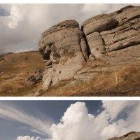 Фотография, обрезанная по главному объекту и фотография «с воздухом» вокруг главного объекта :: Анна Чугунова
