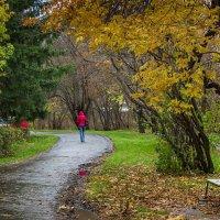 Осеннее настроение :: Татьяна Грищук