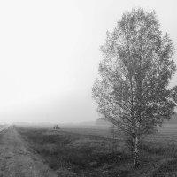 Осенний день. :: Лидия Гордеева