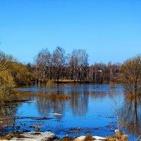 Весенний разлив :: Николай Крюков