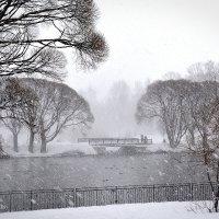 Снегопад :: Дмитрий