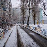 Воронеж. 2 апреля 2016 г. :: Андрей Воробьев