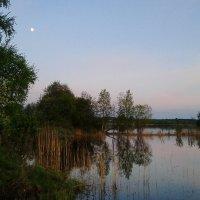 летний вечер :: Кристина Гирина
