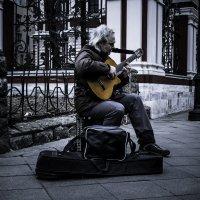 Уличный музыкант :: Demure Nastya Голубева