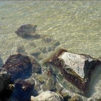 Азовское море :: Нина Корешкова