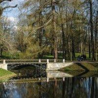 Гуляя по парку :: Елена Пономарева