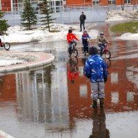 Папа! Купи велосипед! :: Александр Алексеев
