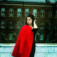 Красное пальто :: Владимир Лупенко