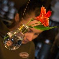 Вазочка для цветка :: Сергей Форос