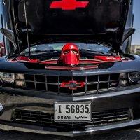 sports car :: Dmitry Ozersky