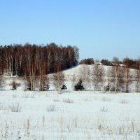 зимняя деревня :: Андрей Дружинин