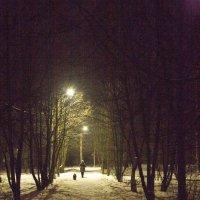 Ночная прогулка. :: Владимир Левый