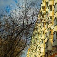 Ежедневник московской весны :: Игорь Герман