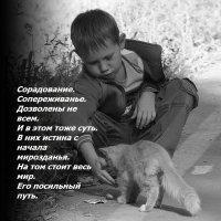 Завтрак  на  обочине. :: Валерия  Полещикова