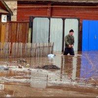 Пусть идут неуклюже пешеходы по лужам.. :: Андрей Заломленков