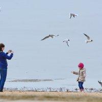 Чего я не чайка,чего не летаю.......... :: Paparazzi