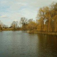 Весенний пейзаж ... :: Игорь Малахов
