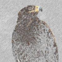 рисунок птицы :: Юлия Денискина