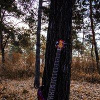 Bass :: Александр Сатаненко