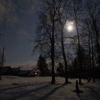 яркая луна :: Седа Ковтун