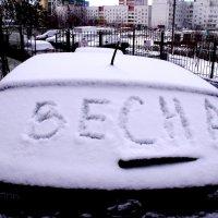 У НАС  ВЕСНА :: Анатолий Бугаев