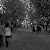 Прогулка :: Angeline VukOlova