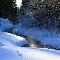 зима :: Наталия Ремизова