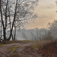 Утро  туманное. :: Валера39 Василевский.