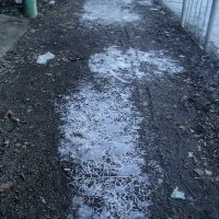 Стеклярус уходящей зимы... :: Ольга Кривых