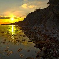 У тихой воды :: Константин Николаенко
