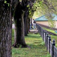Фотография с направляющей линией и линейной перспективой? :: Асылбек Айманов
