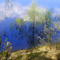 Весна идет! :: Александр Прокудин