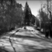 Весеннее утро :: Алексей Бажан