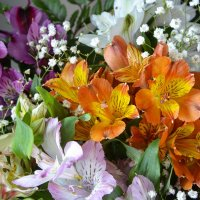 Букет цветов :: Ксения Паращенко