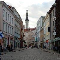Таллин, улица Виру :: Елена Гуляева (mashagulena)