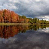 яркие краски осени... :: Сергей