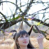 волшебный сад :: Dorin Trofimov