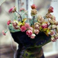 Цветы в старом башмаке на окошке.. :: Алёна