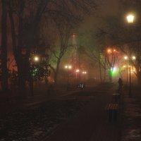Туманным вечером :: Надежда Попова