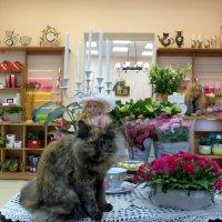 В цветочном магазине :: Ирина Бархатова