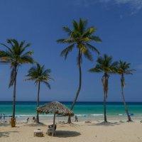 Куба. День первый. Берег океана. :: Юрий Поляков