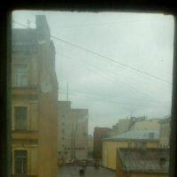Вид из окна на питерские крыши. :: Светлана Калмыкова