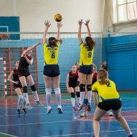 Волейбол 4 :: Валентин Кузьмин