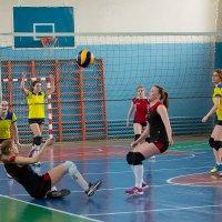 Волейбол 8 :: Валентин Кузьмин