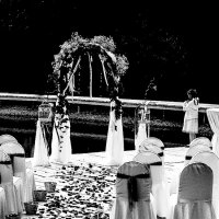 Маленькая невеста :: Светлана Шмелева