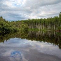 гладь таёжной реки... :: Сергей