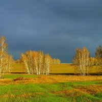 И дождь,и солнце-день чудесный! :: nadyasilyuk Вознюк
