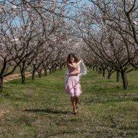 весна :: Анна Губенко